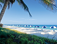 La playa beach resort sr 2